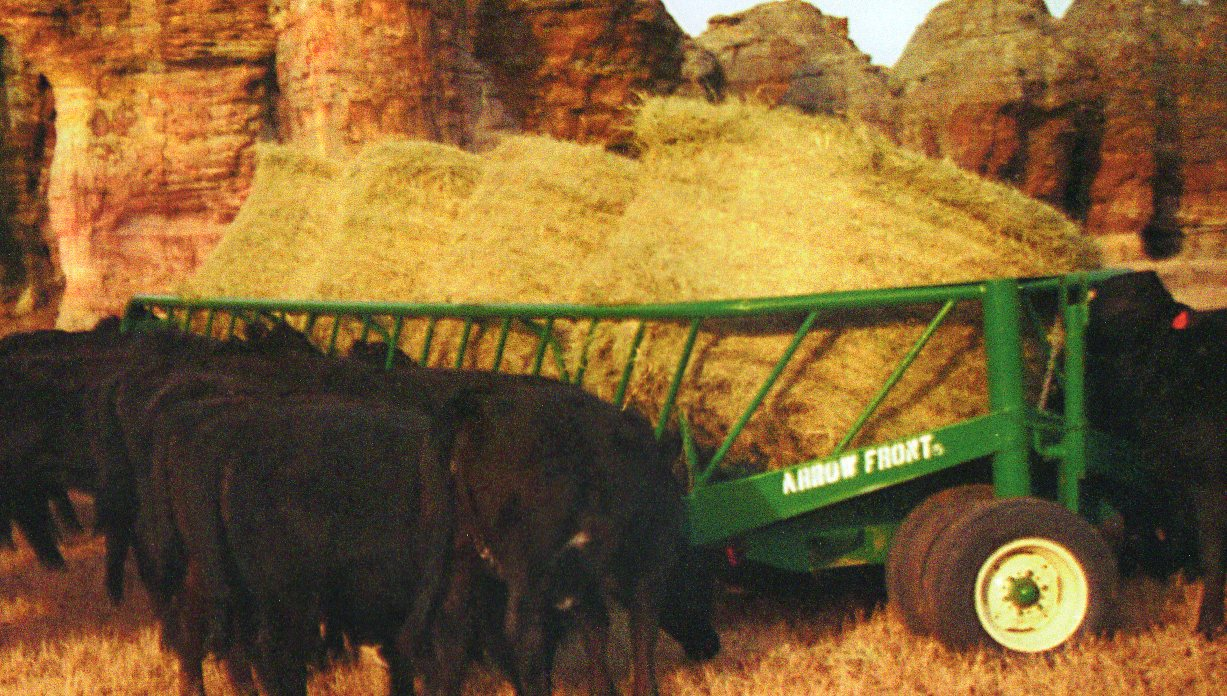 wagons all cattleman cattlemans products choice s open mfg wagon feeder hay jbm